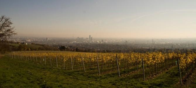 10 kostenlose Aktivitäten in Wien