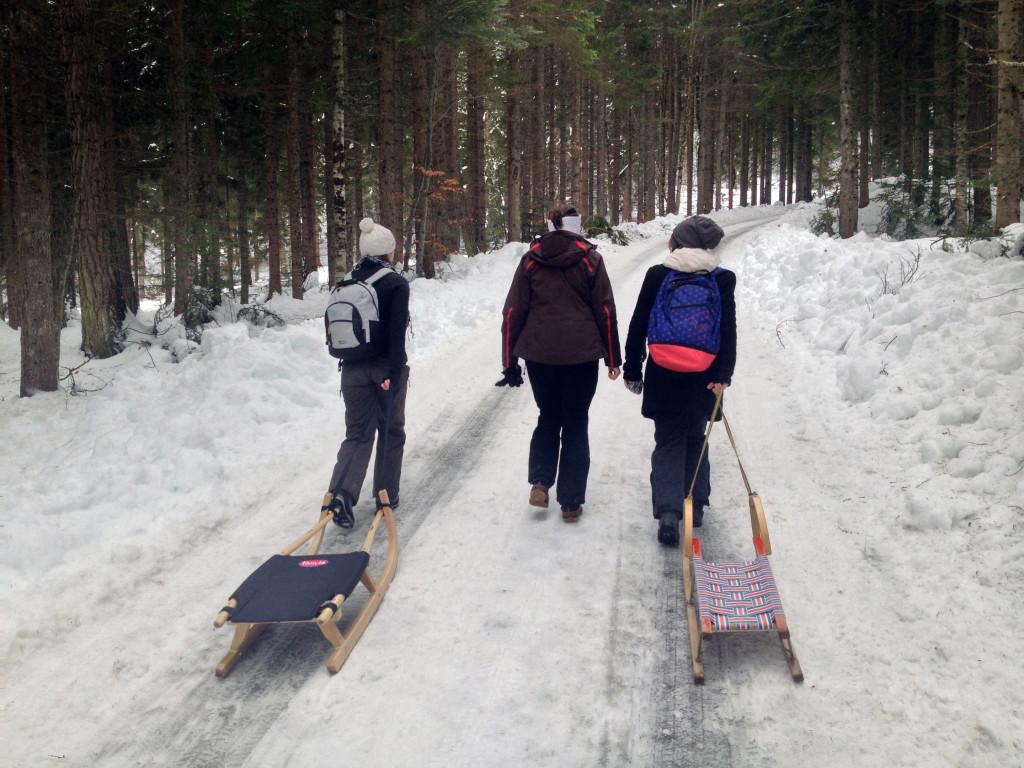 Unterwegs zur Dolomiten-Naturrodelbahn.