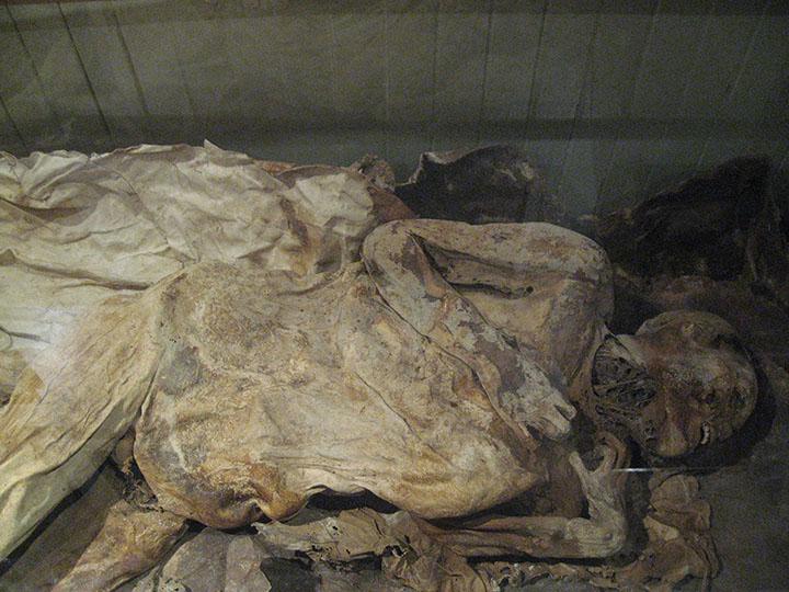 Chilenischer Ötzi im Museum
