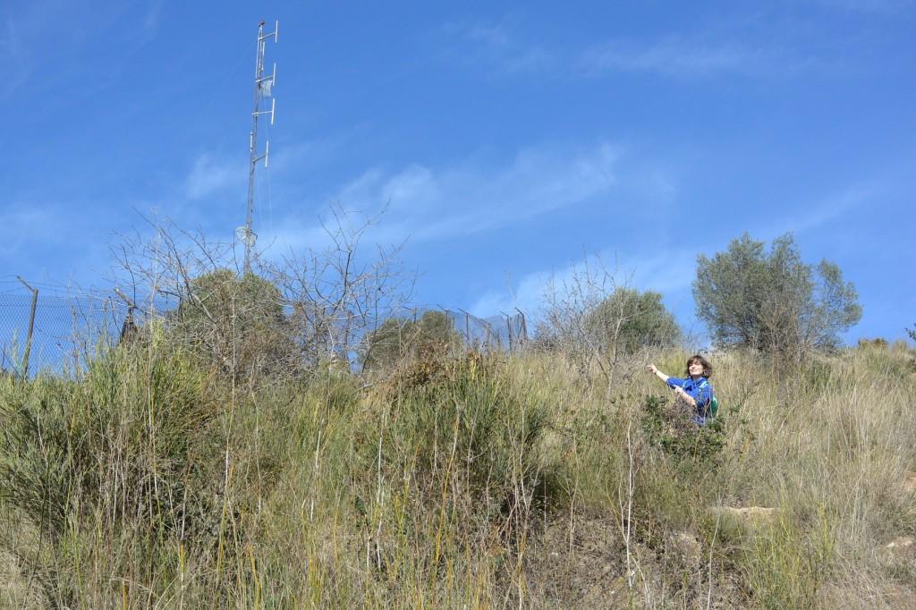 Rauf auf den Hügel von El Carmel.