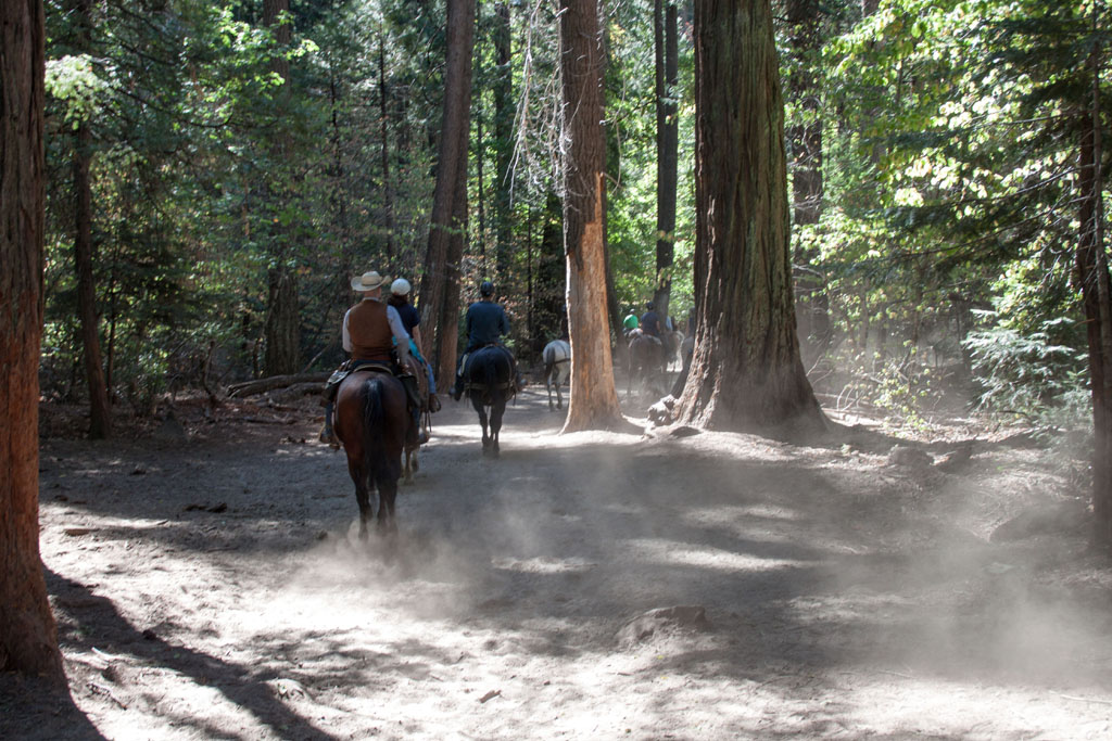 20141006_133845_092_Yosemite_IMG_5096