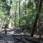 20141006_133925_092_Yosemite_IMG_5099