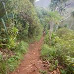 20141022_125558_110_Kauai_115_Kalalau_Trail_DSCN4361