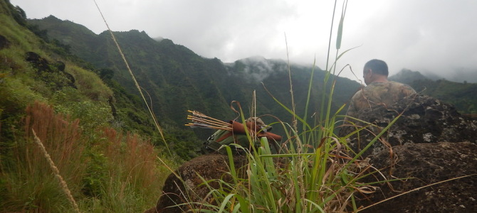 Travel Pin-Wand: Deine schrägste Reisebekanntschaft
