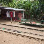 20141201_104045_155_Bamboo_Train_IMG_8225
