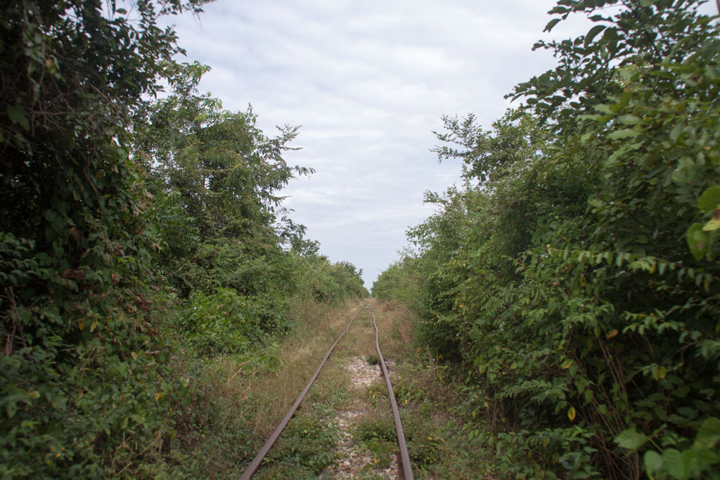 20141201_112457_155_Bamboo_Train_IMG_8243