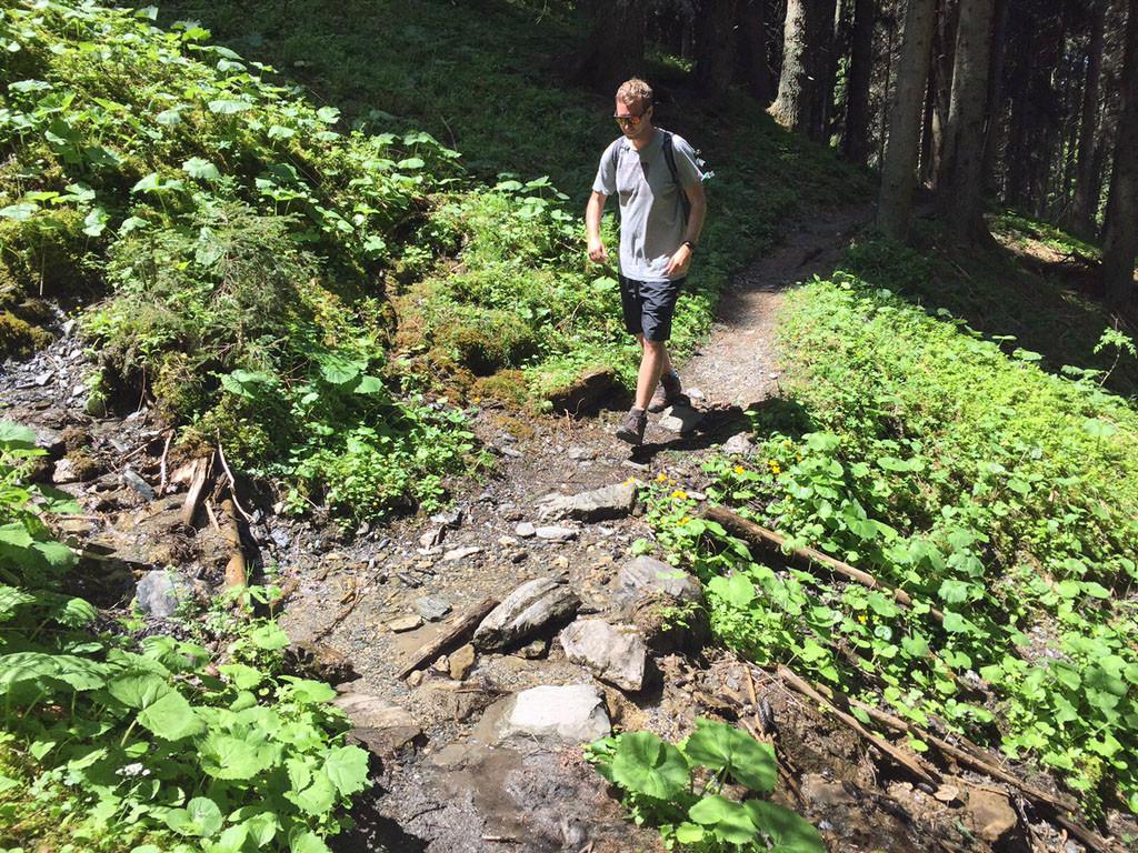 Wandern am Pilzlehrpfad