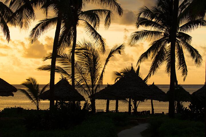photo credit: Tom Erickson 16 06 Zanzibar-1106 via photopin (license)
