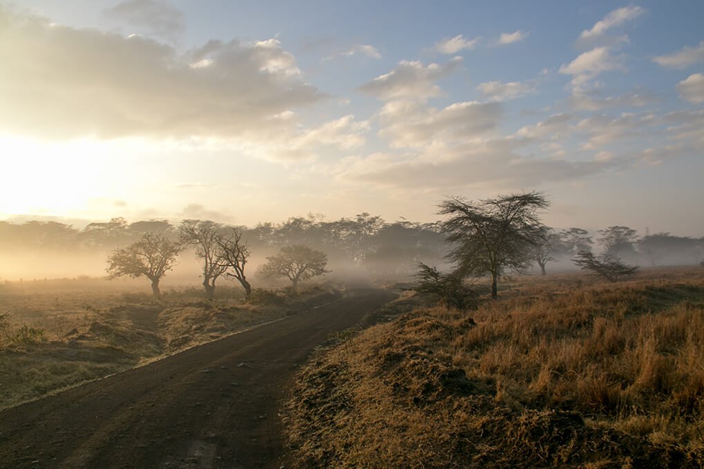 Morgendunst am Lake Nakuro in Kenia