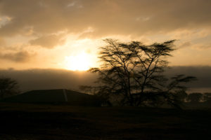 Lake Nakuru Nationalpark im Morgengrauen