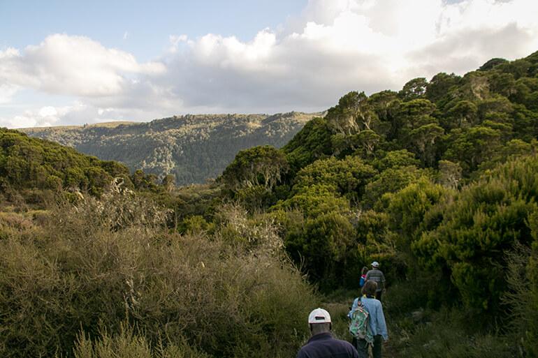 Weg zum Karuru Wasserfall