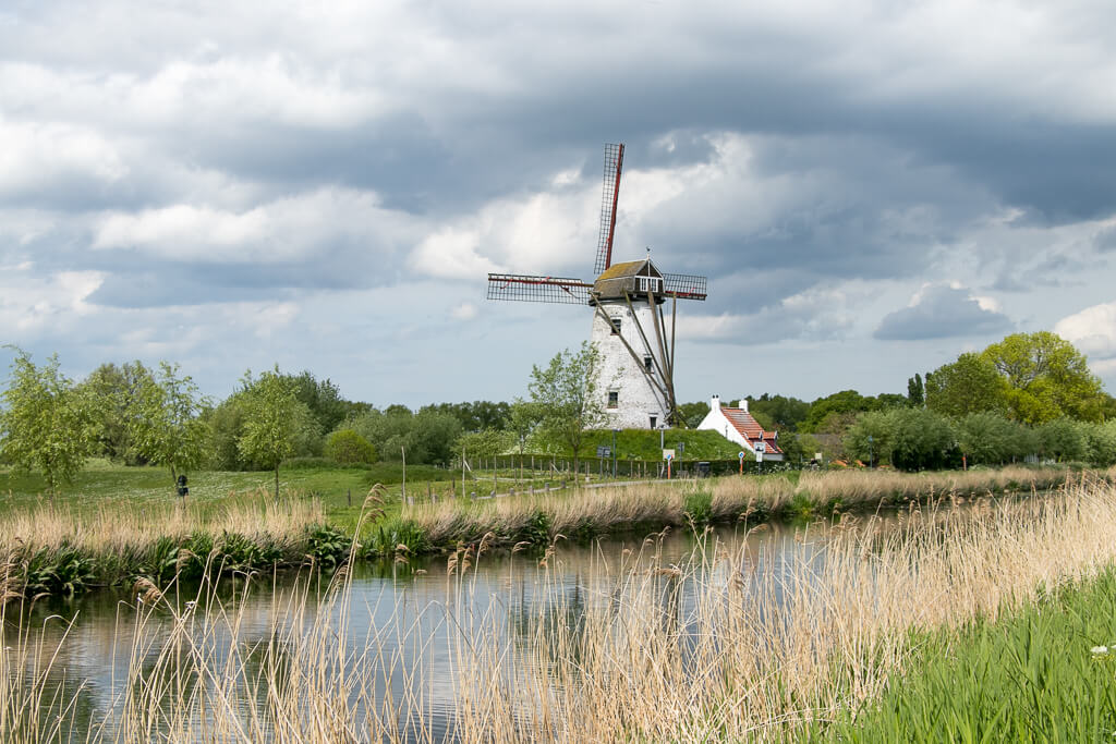 Windmühle in Damme