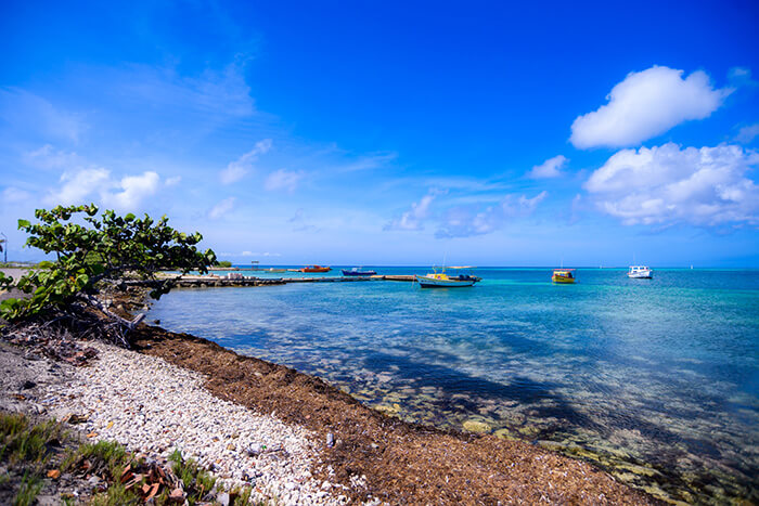 Rodgers Beach - photo credit: Aruba Tourism Authority