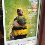 Dominique Persoone im Bienenkostüm