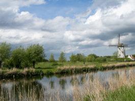 Windmühle in der Nähe von Brügge