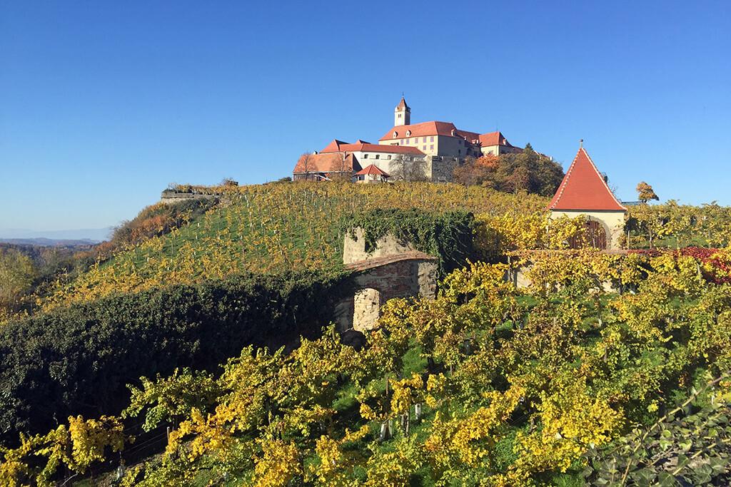 Weingarten Riegersburg im Herbst