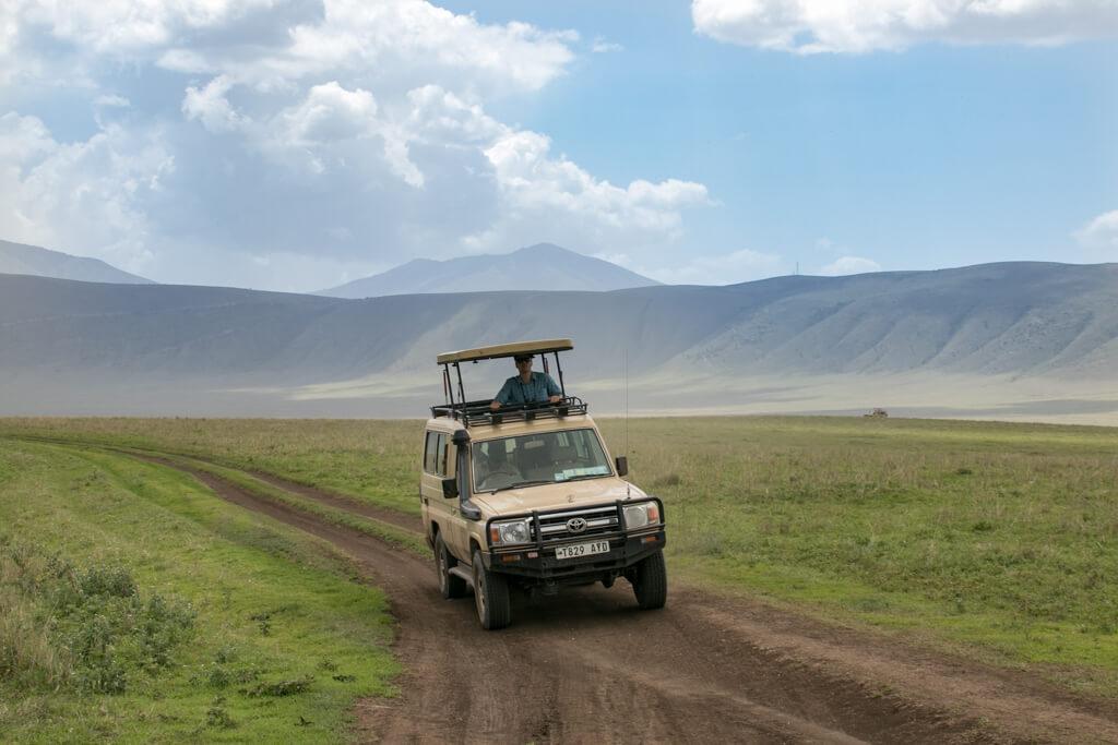 Baboons am Eingang zur Ngorongoro Conservation Area