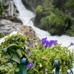 Blumenkisterl an der Brücke über den Gasteiner Wasserfall