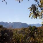 Landschaft Madagaskar tropisch