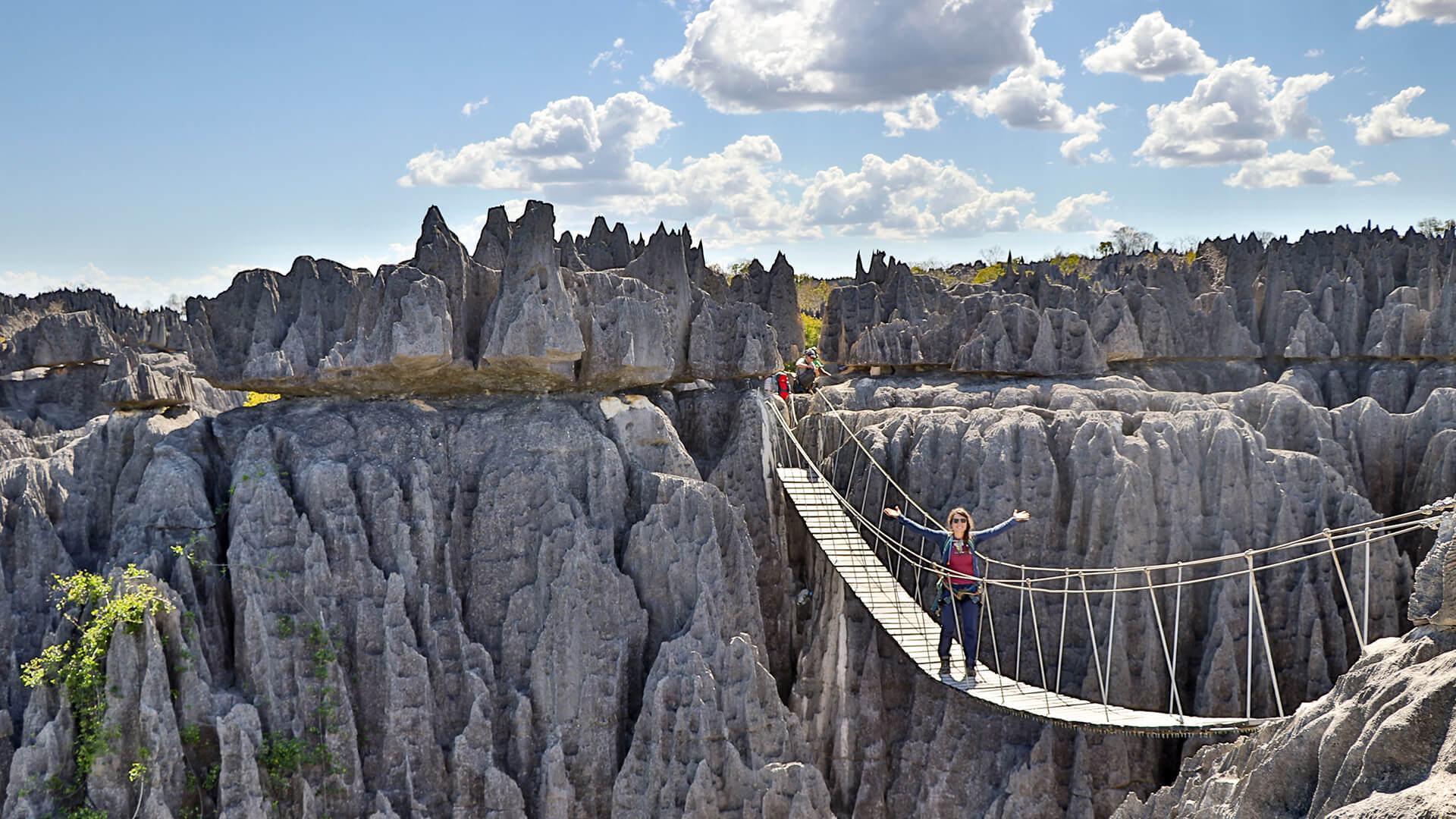 Tsingy de Bemaraha Hängebrücke