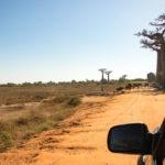 Staubpiste am Weg durch die Baobaballee bei Morondava