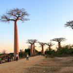 "Touristen ""Massen"" in Madagaskar - alles relativ"