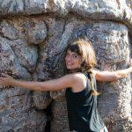 Cori umarmt einen Baobab-Baum