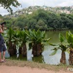 Vögel fotografieren in Madagaskar