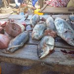 Fischmarkt Antsiranana