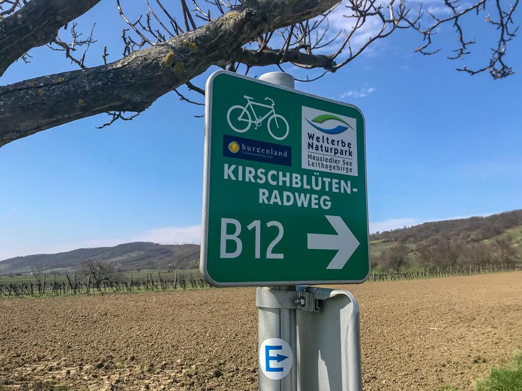 Kirschblütenradweg am Neusiedler See