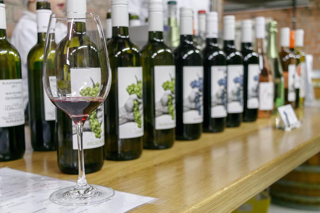Weinverkostungen in Illmitz