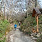 Hohlweg in Purbach