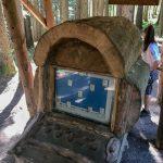 Wald-Computer