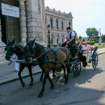 Fiaker vor dem Wiener Burgtheater