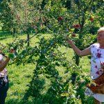 Cori und Johanna im Obstgarten