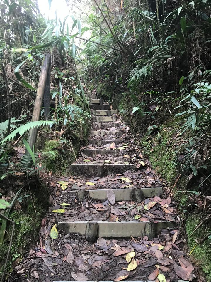 Wanderweg mit Stufen von La Catedral zum Salto del Angel