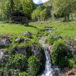 Kleiner Wasserfall am Rundweg neben dem Wildtierpark