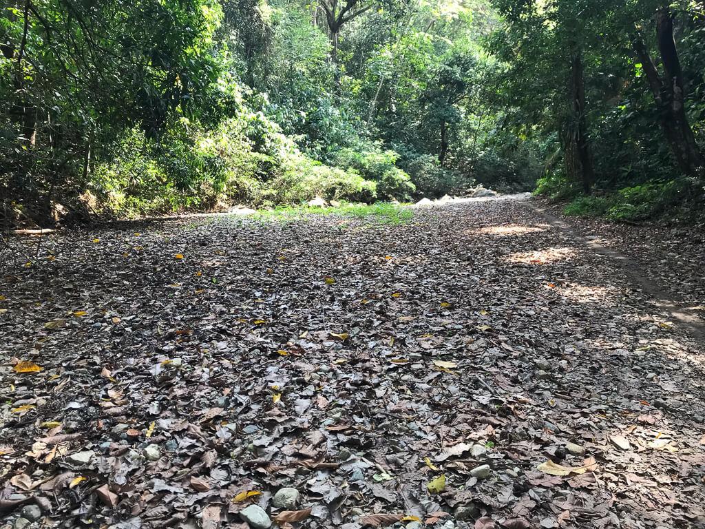 Ausgetrocknetes Flussbett in der Quebrada Valencia