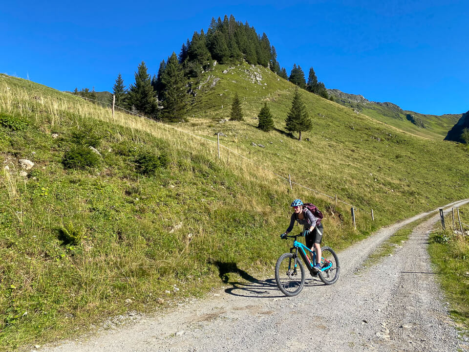 Downhill Mountainbiken in Vorarlberg