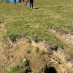 Murmeltierbau auf den Montafoner Alpen
